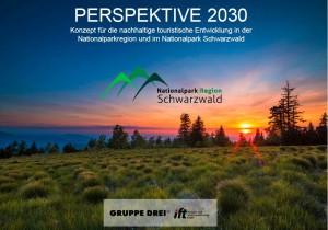 Abendsonne über der Grindenlandschaft im Nationalpark Schwarzwald