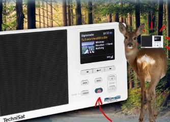 Classic Hits von Schwarzwaldradio