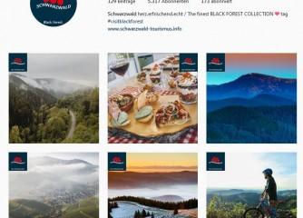 Spitzenreiter auf Instagram: Schwarzwald und Bodensee