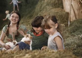 Schwarzwald will Urlaub im Dorf unterstützen