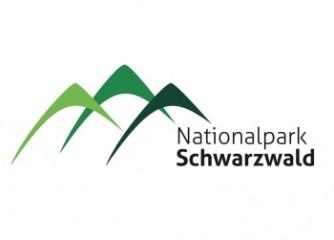 Outdoor Innovationsworkshop im Nationalpark Schwarzwald