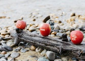 ECHT BODENSEE: Die Apfelwochen am Bodensee