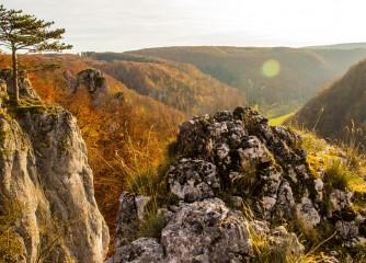 Digitale Mitgliederversammlung des Schwäbische Alb Tourismus