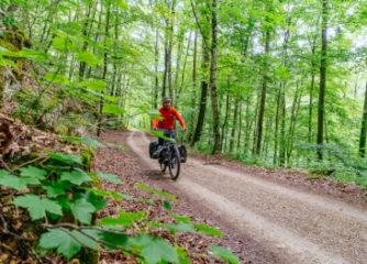 Schwäbische Alb Tourismus richtet Geschäftsstelle für drei Landesradfernwege ein – Förderung durch das Land Baden-Württemberg